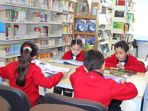 primaria-biblioteca-ilp